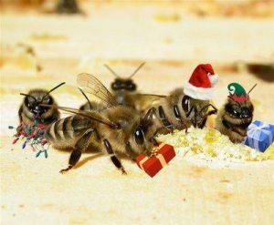 xmas-bees